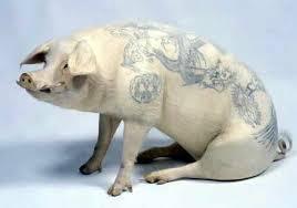Tatuajes en animales 3